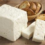 Truva Süt Ve Süt Ürünleri