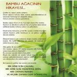 Uğurlu Bambu