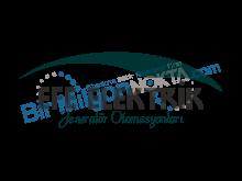 Efe Elektrik Jeneratör Otomasyonları