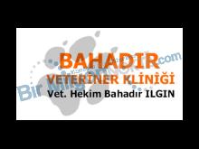 Bahadır Veteriner Muayenesi