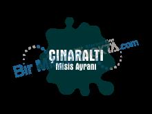 ÇINARALTI MİSİS AYRANI