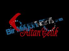Haccam Altan Çelik