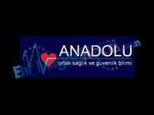 Anadolu Yönetsel  Danışım İş Sağlık ve Güvenlik Hiz. Ltd. Şti.