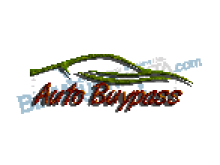 Auto Buypass