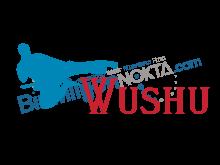 Bursa Wushu