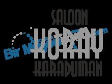 Saloon Koray Karaduman