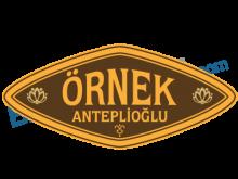 Örnek Anteplioğlu
