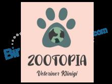 Zootopia Veteriner Kliniği
