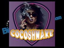 Cocoshmake Güzellik