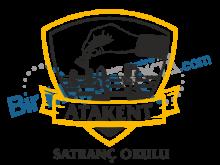 Atakent Satranç Okulu